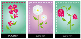 Flowers with color background Royalty Free Stock Photography