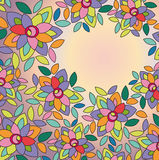 flowers on colored background Royalty Free Stock Images