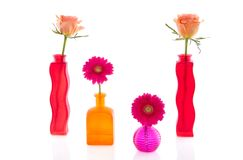 Flowers in colorful glass vases Royalty Free Stock Image