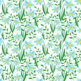 Flowers Colorful Seamless Pattern Background Royalty Free Stock Photos