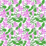 Flowers Colorful Seamless Pattern Background. Vector Illustration Stock Photos