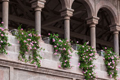 Flowers and columns Royalty Free Stock Images