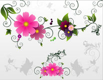 Flowers  composition. Abstract flowers  composition illustration over white background Stock Photography