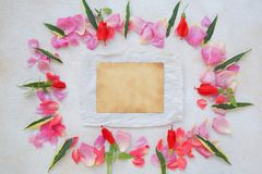 Flowers composition - background. Royalty Free Stock Photos