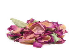 Flowers composition of dried rose flowers. Valentine`s day. Drie Royalty Free Stock Photo