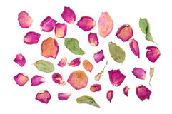Flowers composition of dried rose flowers. Valentine`s day. Drie Royalty Free Stock Photography