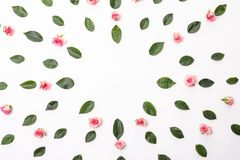 Flowers composition. Frame with rose flowers and eucalyptus branches. Flat lay, top view. stock photo