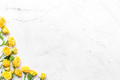 Flowers composition for spring concept top view space for text Royalty Free Stock Image