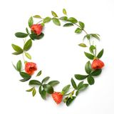 Flowers composition. Wreath made of orange flowers and green leaves on white background. Flat lay, top view stock image