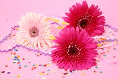 Flowers and confetti Royalty Free Stock Photo