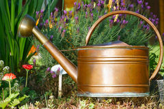 Flowers and Copper Watering can. Flowers, lavender and a old watering can in the home garden Stock Image