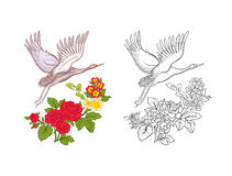 Flowers and crane. Set of colored sample and outline drawing. Stock Photos