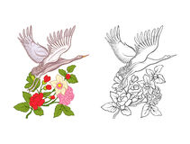 Flowers and crane. Set of colored sample and outline drawing. Royalty Free Stock Image