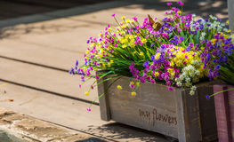 Flowers in a crate royalty free stock photos
