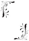 Flowers and curves. Black and white flowers and curves vector illustration