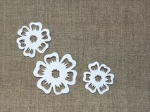 Flowers cut from white paper on linen fabric royalty free stock images