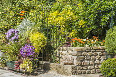 Flowers and décoration. Wall decorated with flowers in a village of Normandie Stock Photography