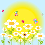 Flowers. Daisies in the meadow - vector Royalty Free Stock Image