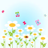 Flowers. Daisies in the meadow - vector Royalty Free Stock Photography