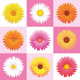 Flowers Daisies Pink Pattern Background Royalty Free Stock Photo