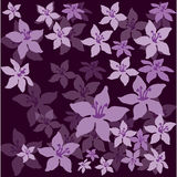 Flowers on a dark background. Vector illustration Royalty Free Stock Photo