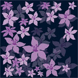 Flowers on a dark background. Vector illustration Royalty Free Stock Photos