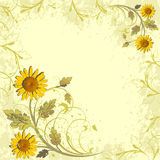 Flowers decor on grunge background Royalty Free Stock Image