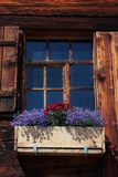 Flowers decorating a old window Royalty Free Stock Photo