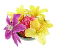 Flowers decoration in bowl Stock Photos
