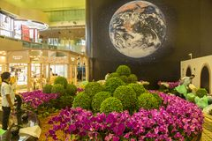 Flowers decoration at Changi airport in Singapore. Changi Airport, is the primary civilian airport for Singapore, and one of the largest transportation hubs in Royalty Free Stock Images