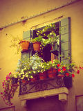 Flowers decoration in Venice, Italy royalty free stock photo