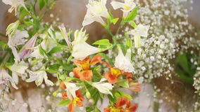Flowers in decorative basket Stock Photos