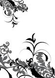 Flowers decorative desgn Stock Photography