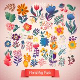 Flowers decorative set of illustration. doodle plants Royalty Free Stock Photography