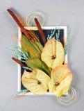 Flowers design Royalty Free Stock Photos