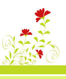 Flowers design Stock Images