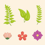 Flowers design. Flowers digital design, vector illustration eps 10 Stock Images