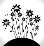Flowers design. Royalty Free Stock Photo