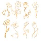 Flowers Design Set Stock Photos