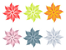 Flowers different colors Royalty Free Stock Photos