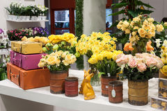 Flowers on display at HOMI, home international show in Milan, Italy. MILAN, ITALY - JANUARY 20: Flowers on display at HOMI, home international show and point of royalty free stock photography