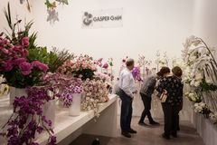Flowers on display at HOMI, home international show in Milan, Italy. MILAN, ITALY - JANUARY 20: Flowers on display at HOMI, home international show and point of stock photos