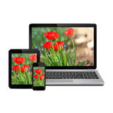 Flowers on display of modern digital devices Royalty Free Stock Photography