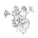 Flowers doodle sketch isolated vector Royalty Free Stock Images