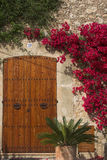 Flowers & door. Red flowers frame traditional wooden door Royalty Free Stock Images