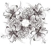 Flowers, drawing with simple pencil and coal on old white paper. Roses, and camomiles Royalty Free Stock Photos