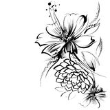 Flowers, drawn in ink on a white paper Stock Photos