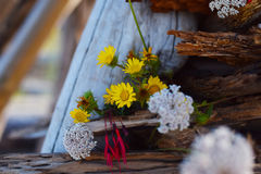 Flowers in driftwood Royalty Free Stock Images