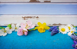 Flowers and early bloomers on wood Royalty Free Stock Images