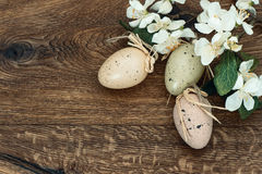 Flowers and easter eggs decoration Stock Photo
